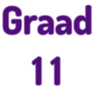 Graad 11 Wiskunde